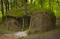 Coed Hills Rural Art Space